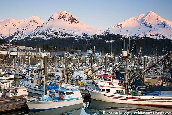 Boat Harbor, Cordova, Alaska.